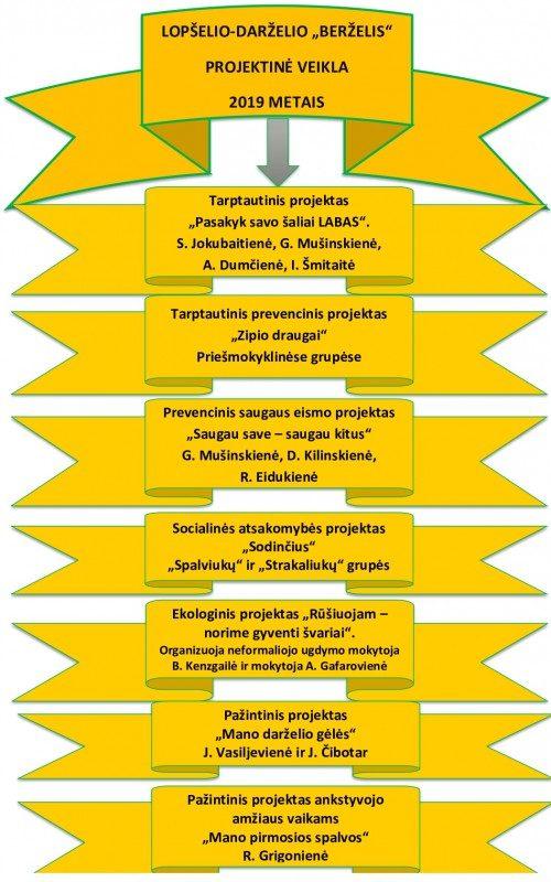 metodine-veikla5